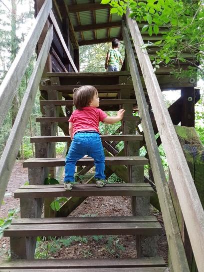 Treppe rauf